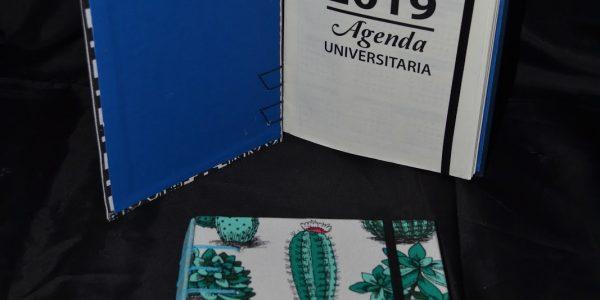 3 - S. astrocuovo Agenda universitaria