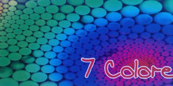 Logo 7 Colores